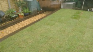 turf_path_after